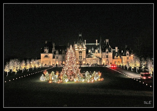"""The Biltmore House - the annual """"Christmas by Candlelight"""" celebration and lights ... held in the 250-room mansion and surrounding grounds annually from the first weekend in November until early January - Asheville, NC"""