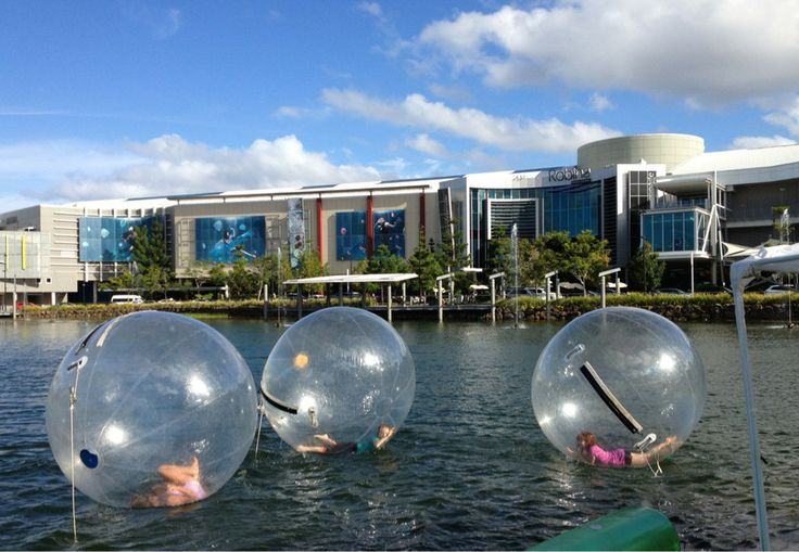 Kids activities. Water balls. $10 for 10mins.  - Robina Town Centre, QLD, 4230 - TrueLocal
