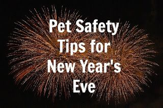 The safety of our pets should always be our priority, especially during the New Year celebrations. #PetSafety