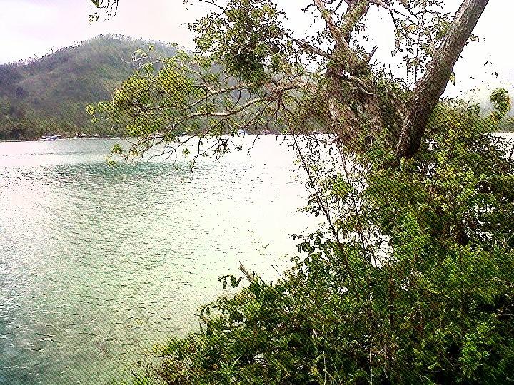 Kiluan - Lampung, Sumatera, Indonesia - Snorkling, Dolphin, Diving, Swimming, Fishing