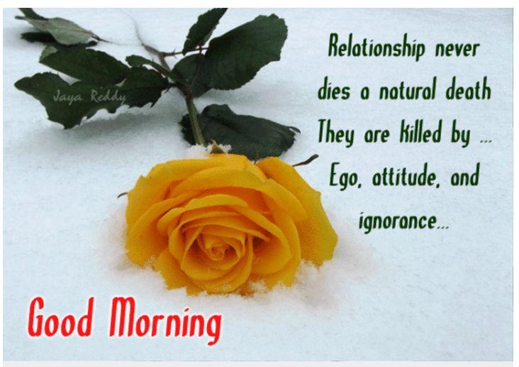 Pin by Namrata Borkar on Morning | Morning images, Good