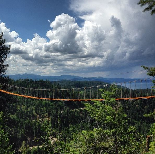 Canopy walk couer d alene.  Be sure to drink in the view -- there's more to come!