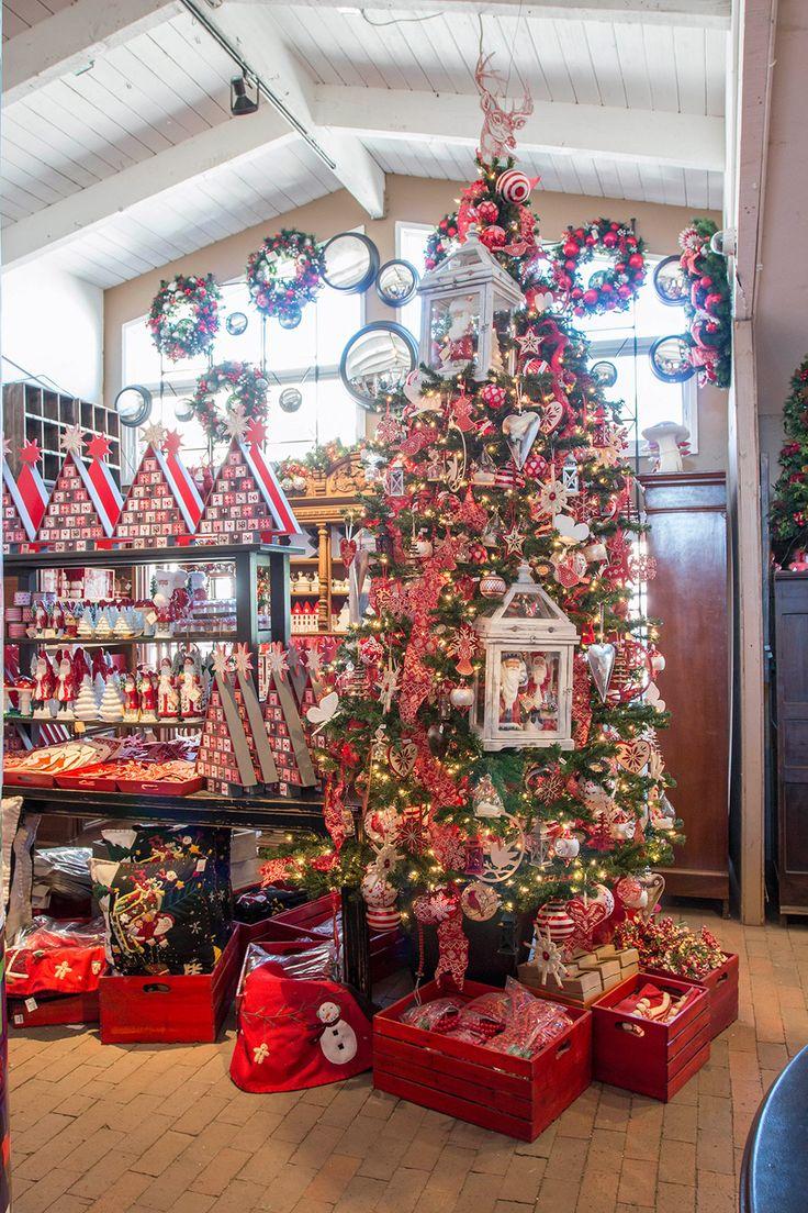 25 Best Roger's Gardens Christmas Images On Pinterest Rogers  - Christmas Trees Ri