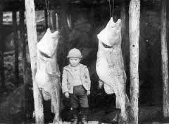 Image result for old nl.fishermen