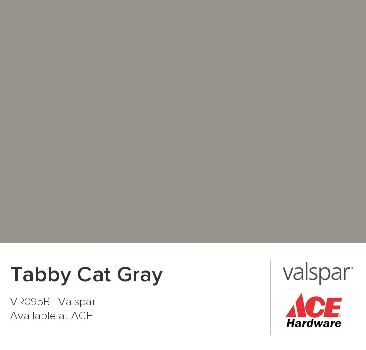 Tabby Cat Gray from Valspar Valspar paint colors, Color