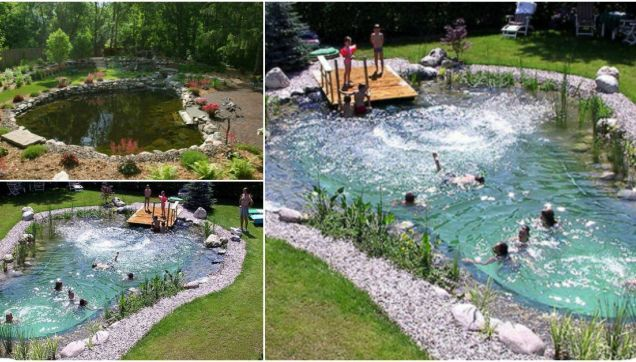 Genius Upcycling Project For Old Tires Make A Stunning Pond Garden Feature In 2020 Natural Swimming Ponds Swimming Pond Diy Pond
