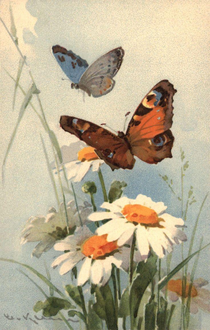les 103 meilleures images du tableau artcatherine klein sur
