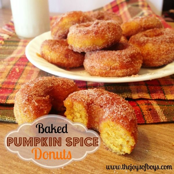 Baked Pumpkin Spice Donuts:: Hope they're like County Line Orchards! http://www.thejoysofboys.com/2013/10/16/baked-pumpkin-spice-donuts/#_a5y_p=1019943