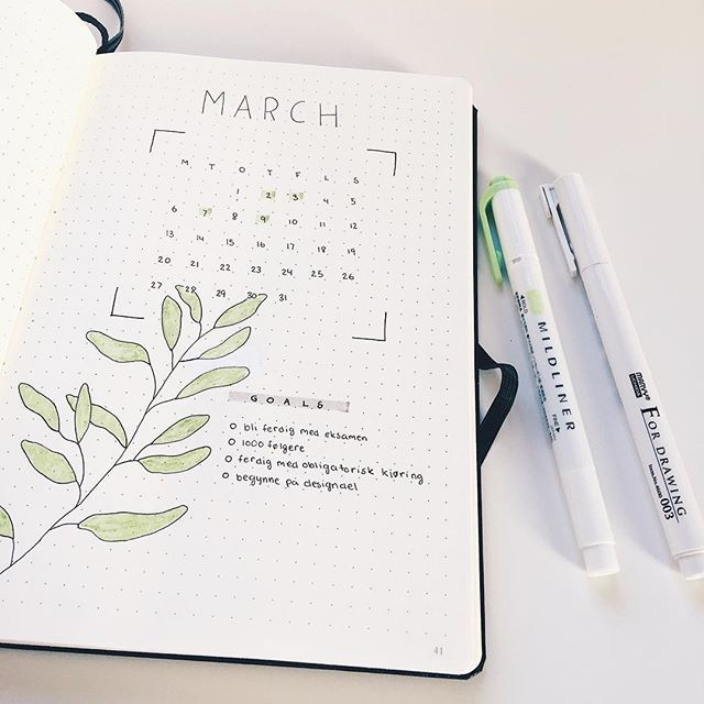 March • • • • #bulletjournal #bujo #plannercommunity #likeforlike #march #goals