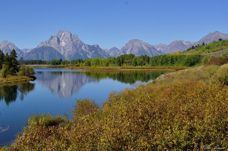 A classic Fall image of Oxbow Bend with Mt. Moran in the background.  This print is available for purchase on etsy.com at natureartgallery.