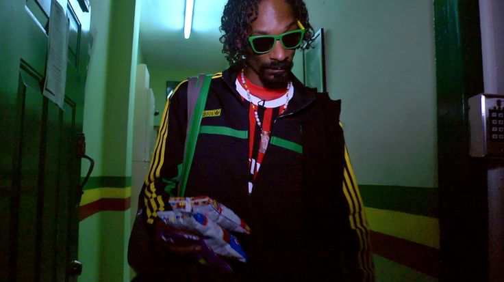 Snoop Lion: Reincarnated