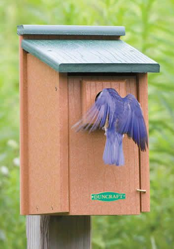 12 best images about bluebird houses on pinterest purple for Best birdhouse designs
