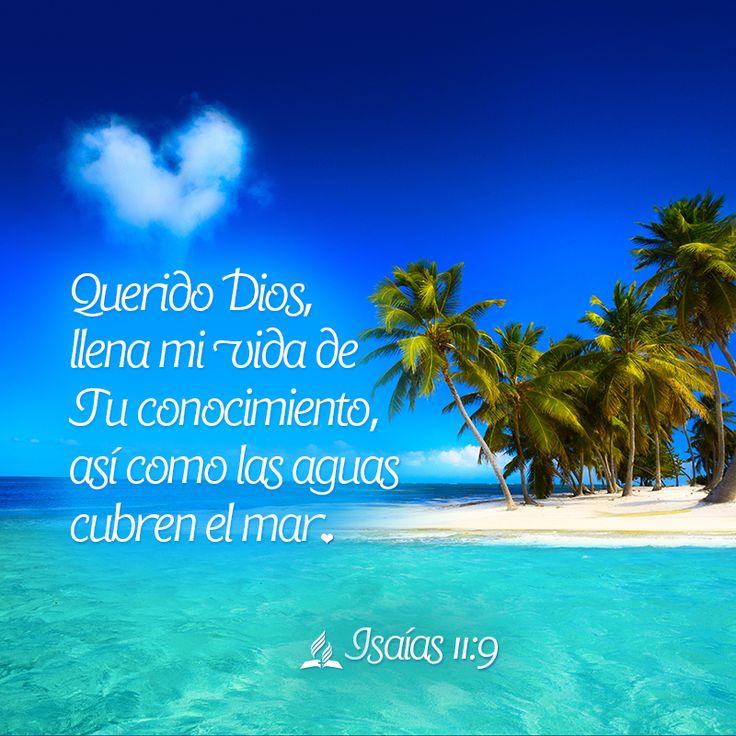 Versiculos De La Biblia De Animo: 24 Best Godly. Quotes, Christmas Quotes Images On