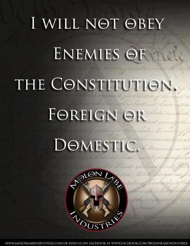 I will not obey enemies of The Constitution, foreign or Obama.........SO TRUE.....LOVE THIS ONE