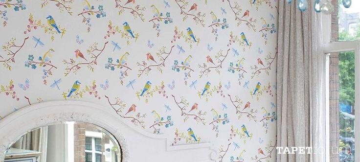 Early Bird White 30386010