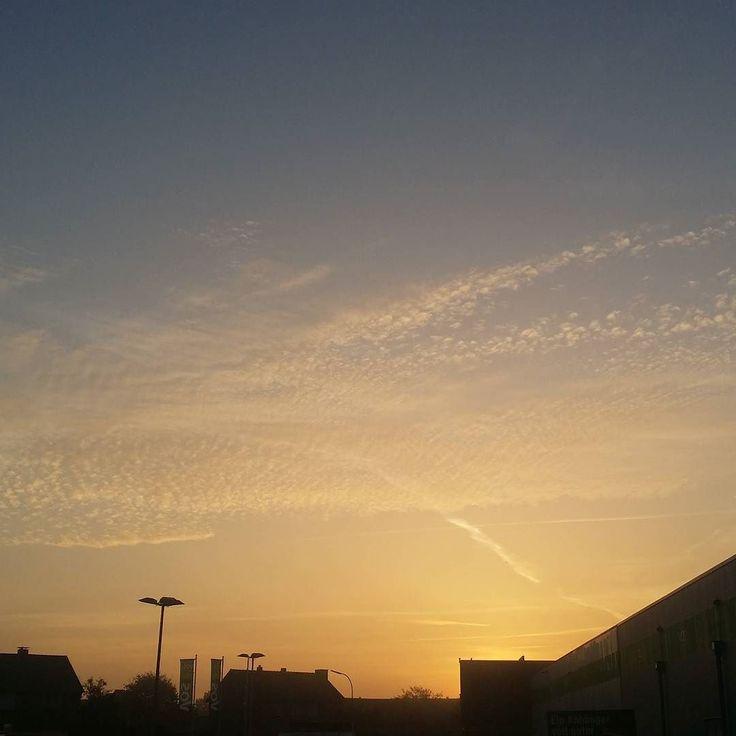 Good morning in the morning... obwohl Feiertag ist bin ich dank  schon ne Weile auf. Brötchen haben wir gerade geholt und jetzt geht es ab nach Hause und warten wann der Rest der Bande aufsteht... der Himmel sieht in echt noch viel schöner aus. Es ist kalt (5C) aber die Luft ist einfach herrlich.  #goodmorning #gutenmorgen #gassi #dogwalk #cold #blogger #herbst #sonnenaufgang #sunrise #fall #autumn