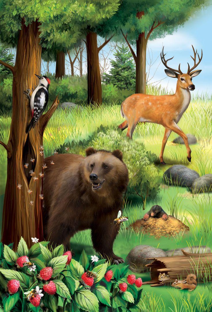 Животные леса с картинками