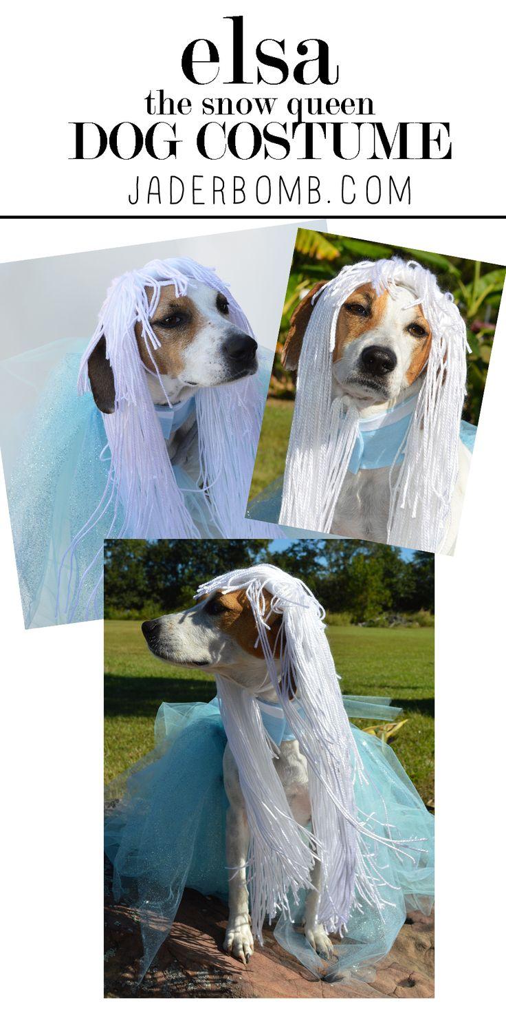 Homemade female dog costumes - photo#44