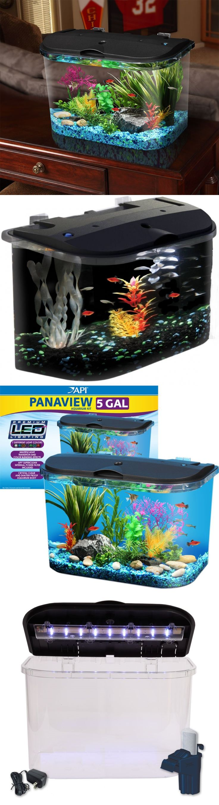 Best 25 big fish tanks ideas only on pinterest amazing for Buy fish tank