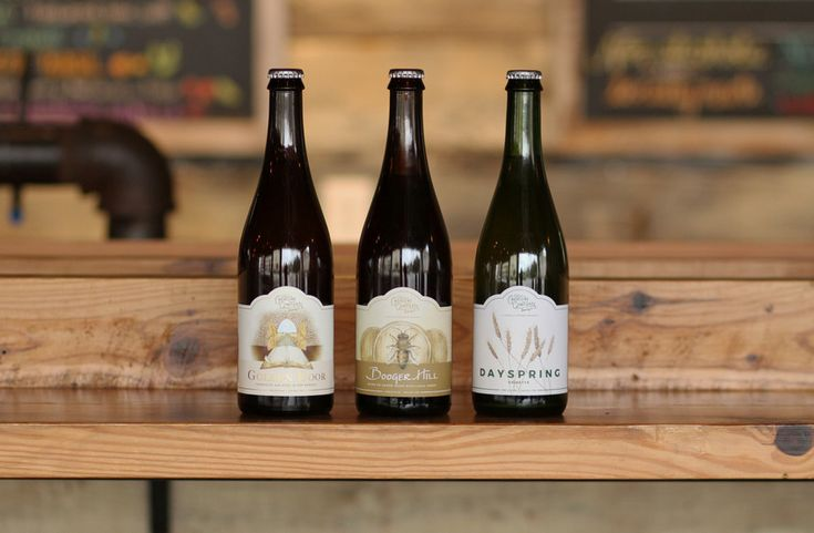 Creature Comforts DaySpring, Booger Hill and Golden Door to be released on Black Friday