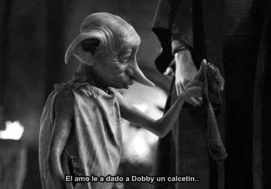 el amo le ha dado a Dobby un calcetin...Dobby es libre...