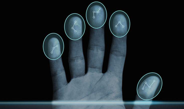 En la semana 23 de gestación, se comienzan a formar las huellas dactilares sobre las yemas de los dedos del ser humano