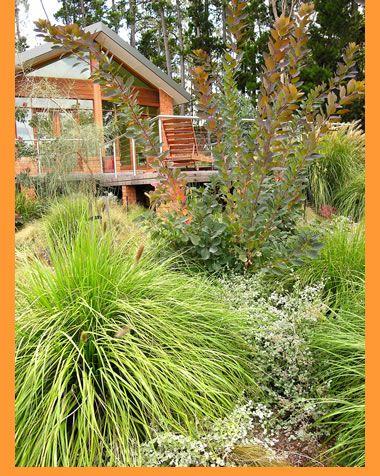 Jim Fogarty Design   Gardens   Australian Style