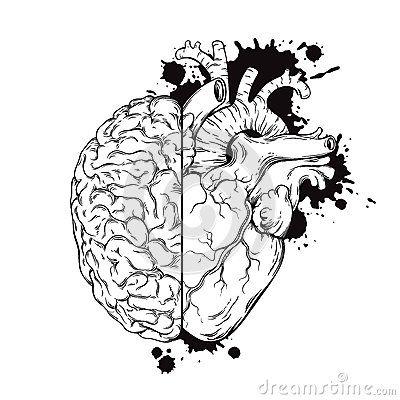 Hand drawn line art human brain and heart halfs. Grunge sketch ink tattoo design  on white background vector illustration