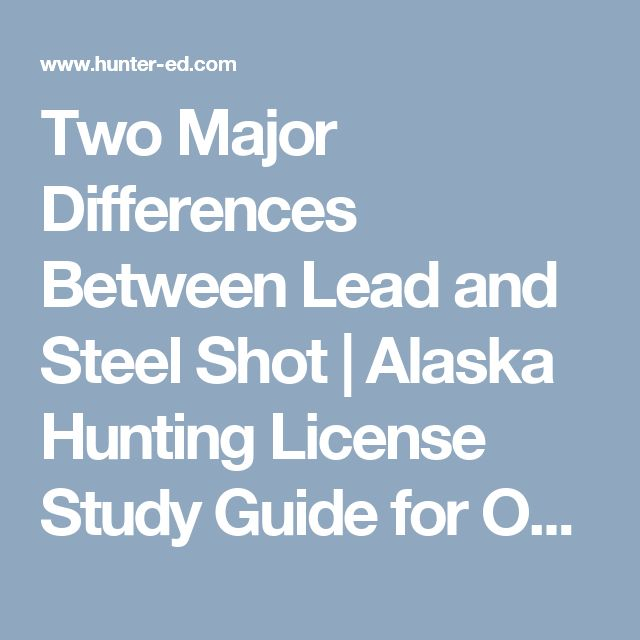 Two Major Differences Between Lead and Steel Shot | Alaska Hunting License Study Guide for Online Hunting Safety Course