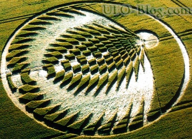 crop circles pictures - Bing Images