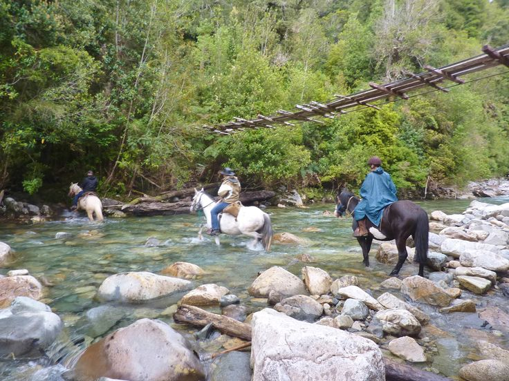 9 day Horseback Expedition through the moderate rainforest of Chile #HorsebackExpedition Chile Off Track