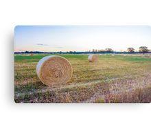 A Roll of the Hay in Strathfieldsaye Metal Print