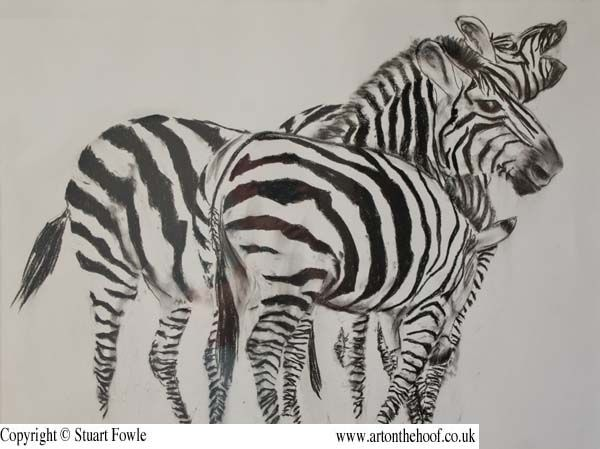 Wildlife drawings – Other Wildlife by Stuart Fowle