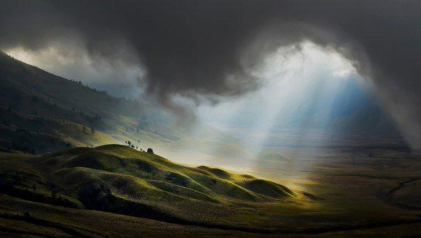 «Природа проста и не роскошествует излишними причинами»  @Исаак Ньютон