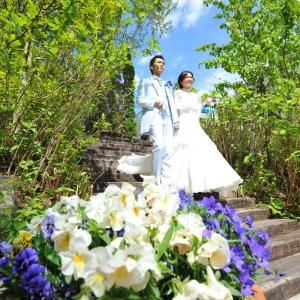 自然たっぷりの那須高原での結婚式♡ゲストにはアルパカ登場!?国内リゾートでの結婚式一覧♡ウェディング・ブライダルの参考に!