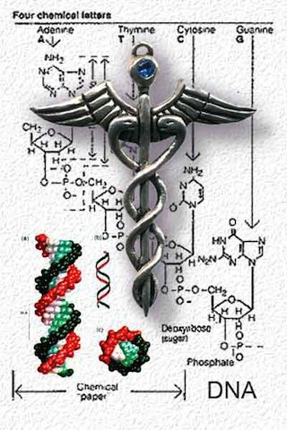 how to make dna in alchemy