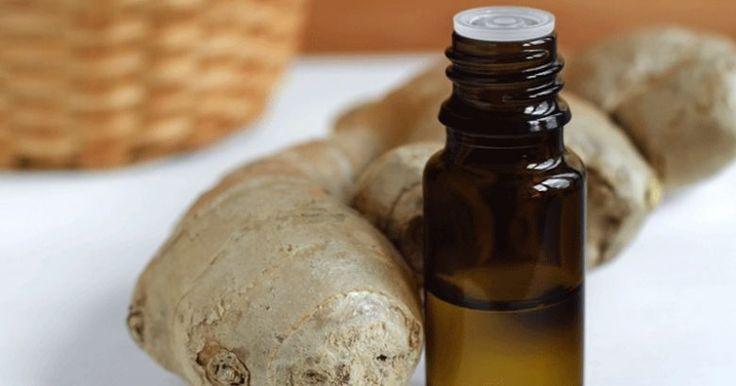 Domácí zázvorový olej může nahradit pilulky proti bolesti, sirup na kašel a další - Vitalitis.cz