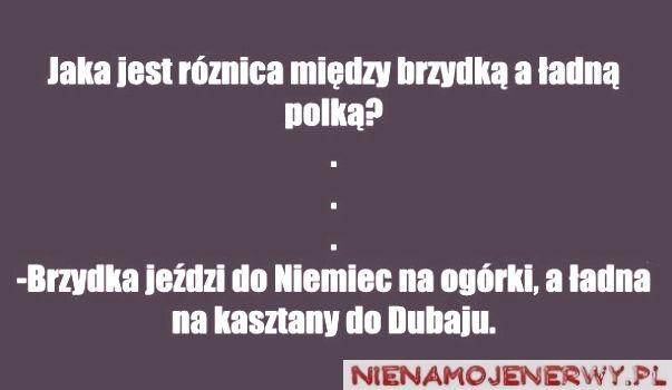 Na kasztany http://www.nienamojenerwy.pl/na-kasztany-do-dubaju/