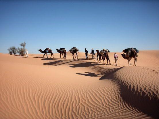 Sahara1 im Tunesien Reiseführer http://www.abenteurer.net/3169-tunesien-reisefuehrer/