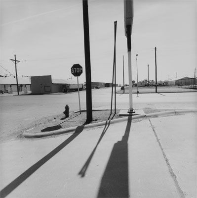 I think that Friedlander's use of black and white photography brings out the true essence and stillness of this image.