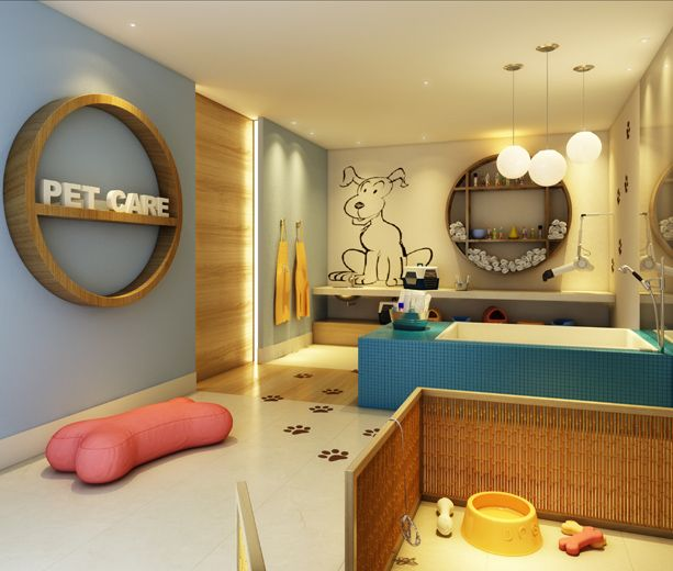 Best 25 dog spa ideas on pinterest built in dog bed for A design and color salon little rock
