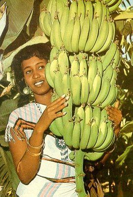 Vintage Somalia! Banana was the main export before the civil war