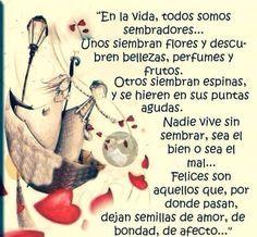〽️Felices son aquellos que, por donde pasan, dejan semillas de amor, de bondad, de afecto