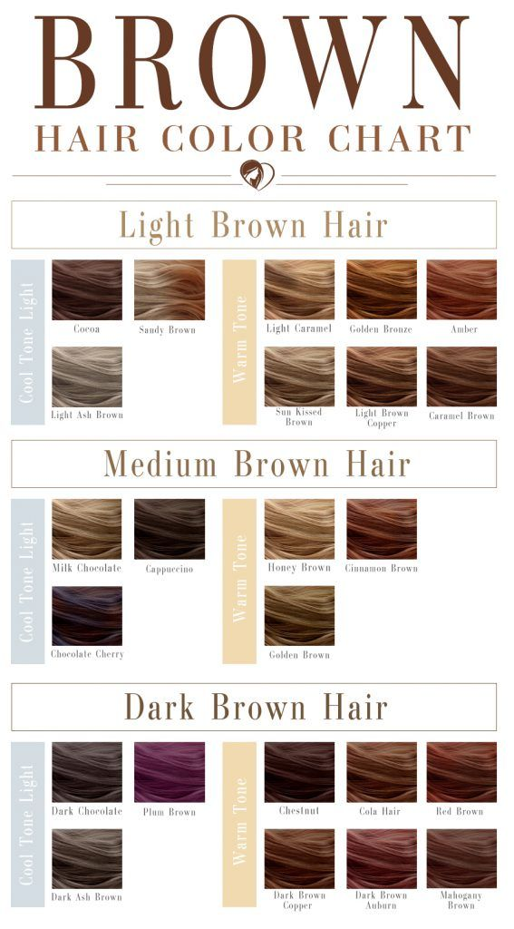 24 Shades Of Brown Hair Color Chart To Suit Any Complexion Colour Pinterest Colors And