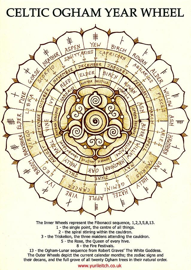 Celtic Ogham Year Wheel Drawing by Yuri Leitch