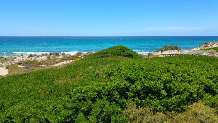 Le spiagge per nudisti sono spesso luoghi ameni, lontani da sguardi indiscreti e circondati da natura incontaminata: Pineta D'Ayala è tutto questo!