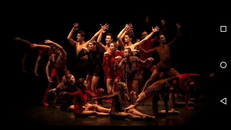Xylographie #taniacarvalho #balletdelyon_TheatreDeLaVille