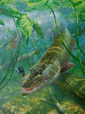 Pike Fish Art Paint