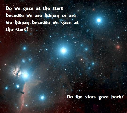 Do The Stars Gaze Back?