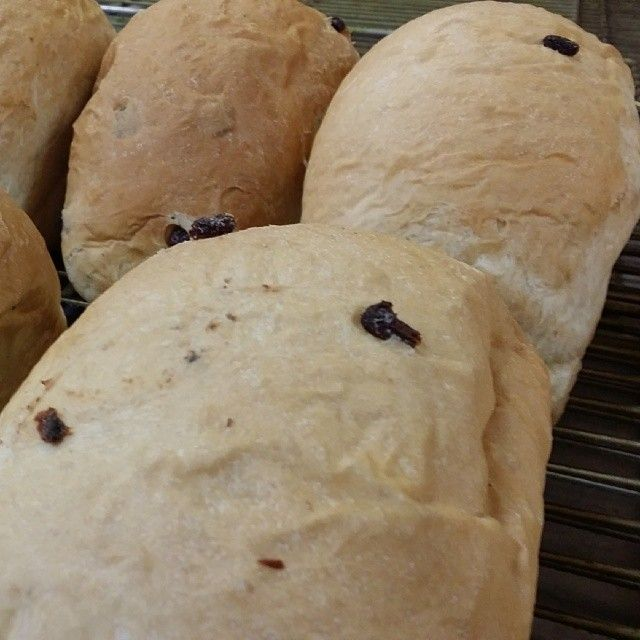Hot raisin bread fresh out the oven... All it takes is one bite. #raisinbread